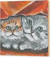 Pet Portraits-two Kitties Wood Print