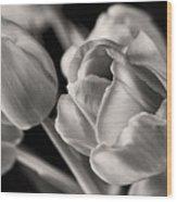 Petal Essence Wood Print
