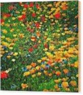 Poppy Petal Patch Wood Print