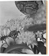 Petal Perch Wood Print