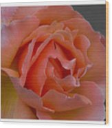Petal Wood Print