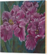 Parrot Tulips Wood Print