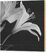 Petals' Light Wood Print