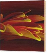 Petals Like Fingertips By Kaye Menner Wood Print