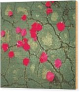 Petals On Asphalt Wood Print by Anna Villarreal Garbis