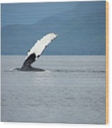 Petersburg Ak Whale Fin Wood Print