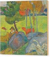 Petit Breton A L'oie Wood Print
