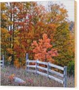 Petoskey Autumn Fence Wood Print