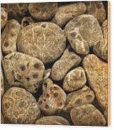 Petoskey Stones Vlll Wood Print