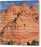 Petrified Sand Dunes Wood Print