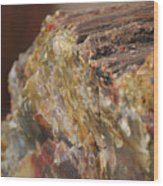 Petrified Wood Wood Print