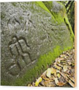 Petroglyphs At An Archaeological Site Wood Print