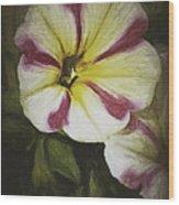 Petunia Sketch Wood Print