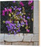 Petunias Through Wrought Iron Window Wood Print