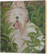 Pflower Nap Wood Print