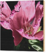 Pflower Pfunn Wood Print