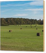 Pharr Mounds - Natchez Trace Wood Print
