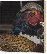 Pheasant In The Eye Wood Print