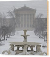 Philadelphia Art Museum From The West In Winter Wood Print