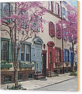 Philadelphia Blossoming In The Spring Wood Print