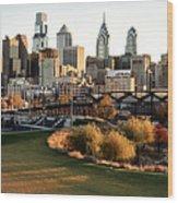 Philadelphia Cityscape From Penn Park In University City Wood Print