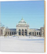 Philadelphia - Memorail Hall In Winter Wood Print