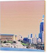 Philadelphia Panoramic Wood Print