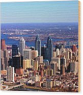 Philadelphia Skyline 2005 Wood Print by Duncan Pearson