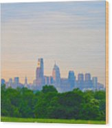 Philadelphia Skyline From West Lawn Of Fairmount Park Wood Print by Bill Cannon