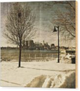 Philadelphia Snowscape Wood Print