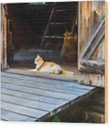 Philipsburg Manor - Gristmill Greeter Wood Print