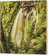 Philosopher Falls, Western Tasmania Wood Print