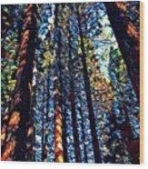 Phil's Trees Wood Print