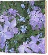 Phlox Divaricata Chattahoochee And Myosotis Forget-me-not Wood Print