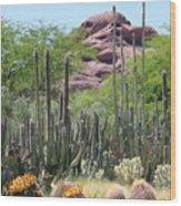 Phoenix Botanical Garden Wood Print