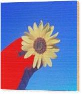 Phone Cam 491 Sun Flower Wood Print