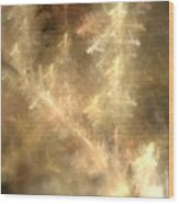Phosphorescent Forest Wood Print