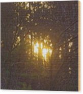 Photo Winter Solstice Dawn Wood Print