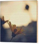 Photo4 Wood Print