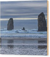 Photographer At Cannon Beach Wood Print
