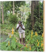 Photographer In The Jungle Wood Print