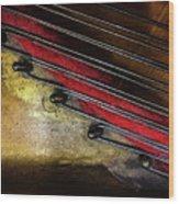 Piano Wire II Wood Print