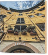 Piazza Dell'anfiteatro, Lucca, Italy Wood Print