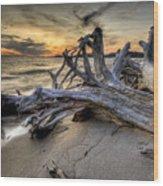 Pic Driftwood Wood Print