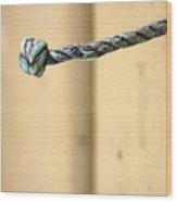 Picena 24 Wood Print