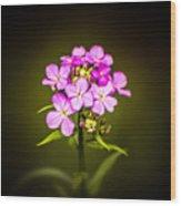 Pick Me Pinky Wood Print