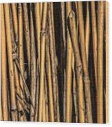 Pick-up Sticks Wood Print