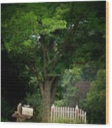 Picket Fence Mailbox Wood Print