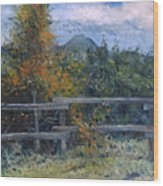 Picket Fence Near Heidelberg Western Cape South Africa Wood Print