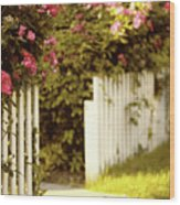 Picket Fence Roses Wood Print